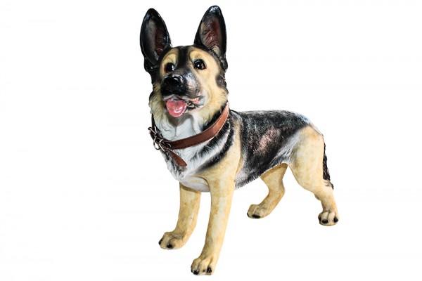Schaeferhund h33cm L40cm